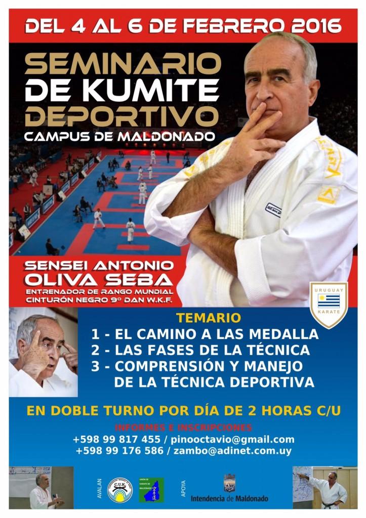 Seminario de Kumite Deportivo - Maestro Antonio Oliva Seba