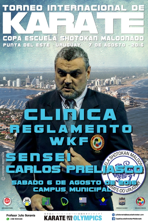 2016 Afiche Clinica Copa ESM web1
